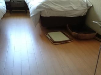 小型犬用ベッドとトイレ